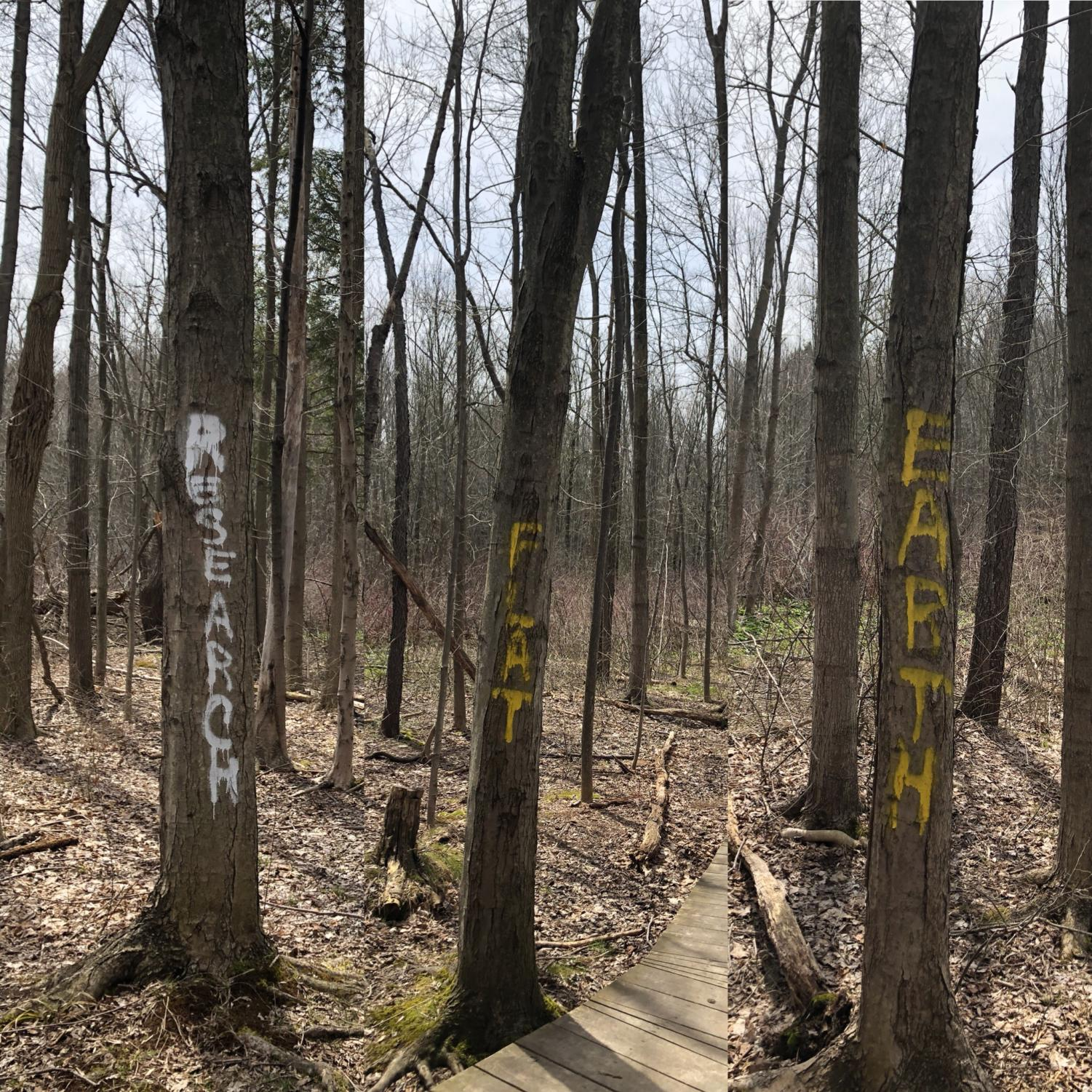 Vandals spray painted trees in Asbury Woods Park to spread the flat earth theory.