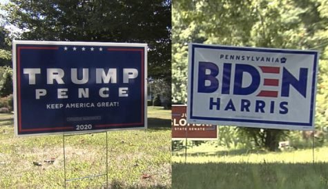Political signs decorate nearly every yard in Erie County.
