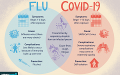 "Influenza and COVID-19, two viruses, in which are expected to become a ""twindemic"""